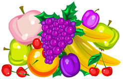 Vector fruits Stock Photography