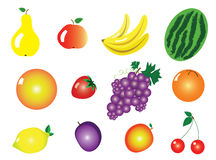 Vector Fruits Stock Images