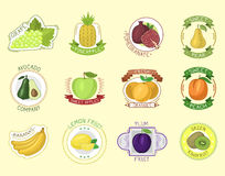 Vector fruits badges. Royalty Free Stock Images