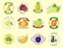 Vector fruits badges. Stock Photos