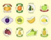 Vector fruits badges. Royalty Free Stock Photo
