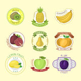 Vector fruits badges. Royalty Free Stock Photos