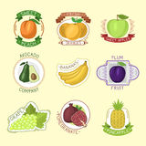 Vector fruits badges. Stock Photography