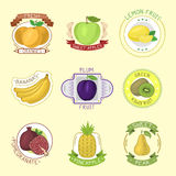 Vector fruits badges. Stock Image