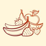 Vector Fruits Royalty Free Stock Photo