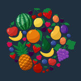 Vector Fruits and Berries Flat Style Icons Set in Circle Shape over Dark Background Royalty Free Stock Photography