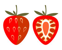 Vector fruits illustration. Detailed icon of strawberry, whole and half, isolated over white background. Royalty Free Stock Photography