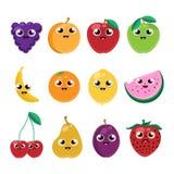 Vector fruits Stock Photos