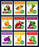 Vector fruits price cards set for fruit shop. Fruits price cards of exotic kiwi, nectarine peach or tropical pineapple and juicy apple, garnet or grape and plum Royalty Free Stock Photo