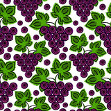 Vector fruits seamless pattern. Bright background with grape and leaves on the white backdrop. Royalty Free Stock Image