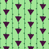 Vector fruits seamless pattern. Bright background with grape and leaves on the white backdrop. Royalty Free Stock Photos