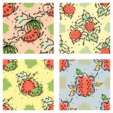 Vector fruits seamless pattern. Watermelon, pomegranate, strawberry, berry Stock Image