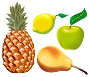 Vector fruits set Stock Images