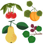 Vector fruits set Royalty Free Stock Photography