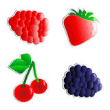 Vector fruits stickers Royalty Free Stock Image