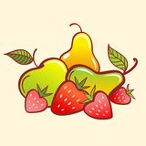 Vector Fruits Stock Image