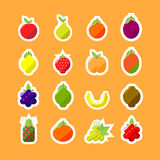 Vector Fruits. Various Fruits in a Minimalist Style on an Orange Background Royalty Free Stock Photo