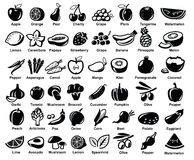 Vector fruits and vegetables Stock Photography