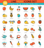 Vector Fruits and vegetables flat line icon set. Modern elegant style design  for web. Stock Photography