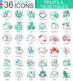 Vector Fruits and vegetables flat line outline icons for apps and web design. Fruits and vegetable food icon. Royalty Free Stock Photos