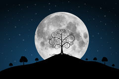 Vector Full Moon Illustration Royalty Free Stock Image