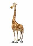 Vector fun giraffe Royalty Free Stock Photography