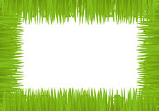 Vector fun grass frame Stock Image