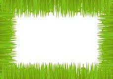 Vector fun grass frame vector illustration