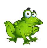 Vector fun green frog Stock Photos