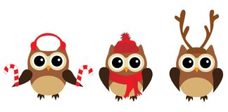 Vector Fun Owls Stock Images