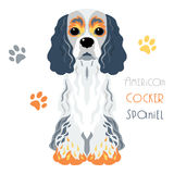 Vector funny American Cocker Spaniel dog sitting Royalty Free Stock Photos