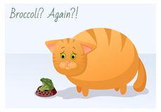 Vector funny animal. Fat cute cat on a diet. Postcard with a comic phrase. Sad cat with an plate of broccoli. Isolated object on vector illustration