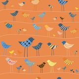 Vector funny bird. Seamless pattern. Stock Image