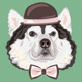 Vector funny cartoon hipster Alaskan Malamute dog Stock Photos