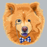 Vector funny cartoon hipster chow-chow dog. Hipster dog chow-chow breed in a blue glasses and bow tie Stock Photo
