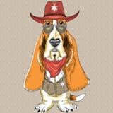 Vector funny cartoon hipster dog Basset Hound Stock Photos