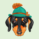 Vector funny cartoon hipster dog dachshund Royalty Free Stock Image
