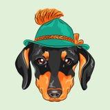 Vector funny cartoon hipster dog dachshund royalty free illustration