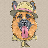 Vector funny cartoon hipster dog German shepherd. Hipster dog breed German shepherd in a green hat and neckerchief Royalty Free Stock Photography
