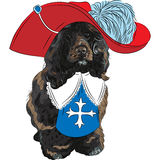 Vector funny cartoon Portuguese Water Dog musketeer Royalty Free Stock Photography