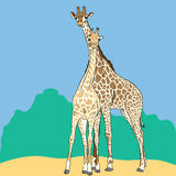 Vector Funny couple in love giraffes Royalty Free Stock Photos