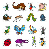 Vector funny insects and bugs. Vector funny insects and cute bugs on white background Stock Photos