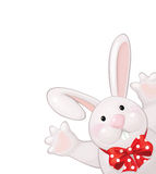 Vector of funny rabbit isolated. Royalty Free Stock Image