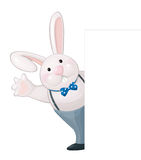 Vector of funny rabbit isolated hiding by bank. Royalty Free Stock Photos