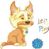 Vector Funny shaggy puppy wants to play Royalty Free Stock Photos
