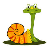 Vector funny snail Royalty Free Stock Photos