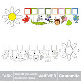Vector game. Find hidden word Camomile. Search the word. Vector rebus game. Solve the rebus and find the word Camomile. Task and answer Royalty Free Stock Photography