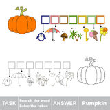 Vector game. Find hidden word pumpkin. Search the word. Vector rebus game. Solve the rebus and find the word pumpkin. Task and answer Stock Photo