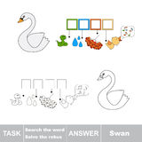 Vector game. Find hidden word Swan. Search the word. Vector rebus game. Solve the rebus and find the word Swan. Task and answer Royalty Free Stock Photos
