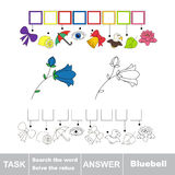 Vector game. Search the word. Find hidden word Campanula Stock Image